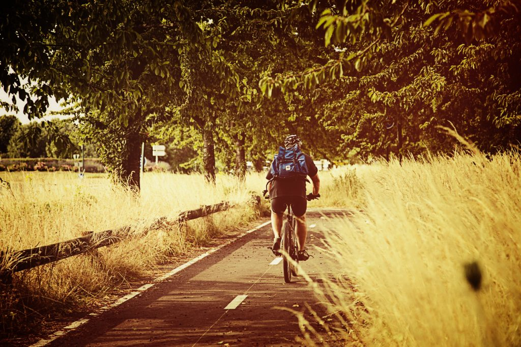 cyclist in the countryside on a cycle path